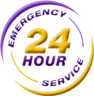 24Hr Emergency Computer Service